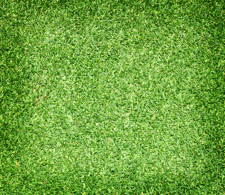 lawns: Green lawns, golf courses, outdoor soccer field background.