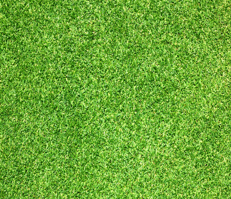 soccer field: Green lawns, golf courses, outdoor soccer field background.