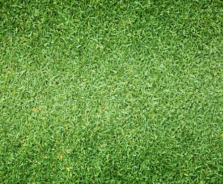 terrain de foot: Parcours de golf motif de pelouse verte texture de fond. Banque d'images