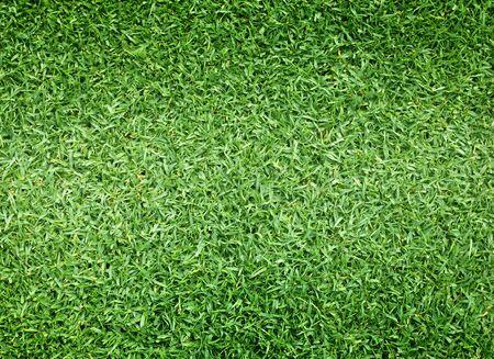 ゴルフ場の緑の芝生パターン テクスチャ背景です。 写真素材 - 48437257