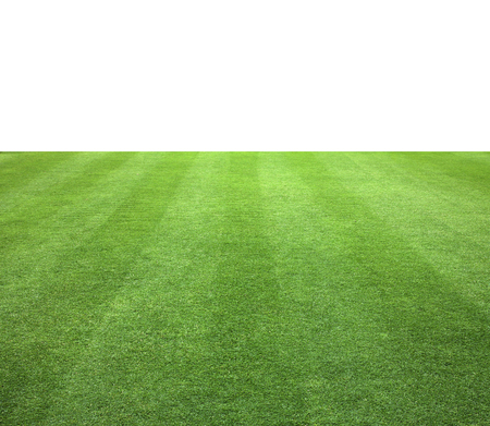 sports field: Grass background isolated on white background. Stock Photo