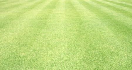 granite floor: Football field green grass  pattern textured background. Stock Photo