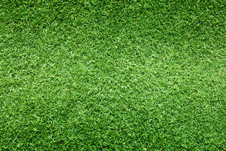 soccer field: grass background Golf Courses green lawn pattern textured background.