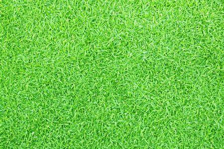 Lawn background Green grass football field Background pattern Stock Photo