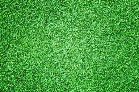 Grass green field football Beautiful natural background pattern. Stok Fotoğraf