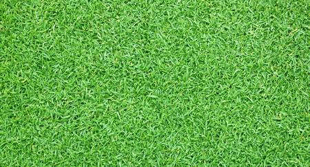 Grass green field football Beautiful natural background pattern. Stock Photo