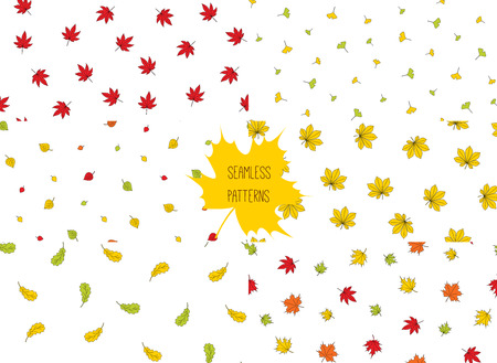 Set of hand drawn seamless vector patterns with autumn leaves from different trees (oak, chestnut, birch, ginkgo, maple, momiji), on white background. Design concept for textile print, wrapping paper.
