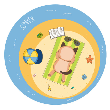 Hand drawn vector illustration of a cute cat lying face down on a beach towel, sunbathing, with sunglasses, book and baseball cap, and starfish, text Summer. Isolated objects. Design concept children.