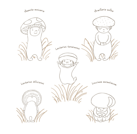 Hand drawn vector illustration of cute mushrooms with Latin names: fly amanita, red capped scaber stalk, honey fungus, woolly milk cap, saffron milk cap. Unfilled outline. Design concept for children.
