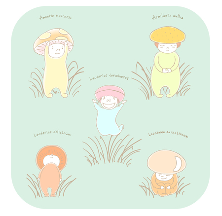 Hand drawn vector illustration of cute mushrooms with Latin names: fly amanita, red capped scaber stalk, honey fungus, woolly milk cap, saffron milk cap. Isolated objects. Design concept for children. Ilustração