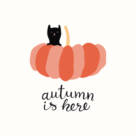 Hand drawn vector illustration of a cute funny little black cat and big pumpkin, with lettering quote Autumn is here. Isolated objects on white background. Flat style design. Concept for fall harvest.