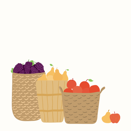 Hand drawn vector illustration of baskets with grapes, apples, pears, with copy space. Isolated objects on white background. Flat style design. Concept for gardening, autumn harvest.
