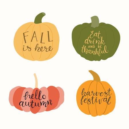 Hand drawn vector illustration of a different pumpkins, with harvest, fall lettering quotes. Isolated objects on white background. Flat style design. Concept for gardening, autumn harvest. Illustration
