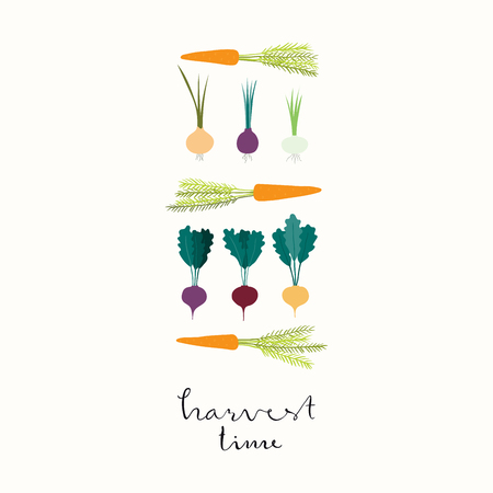 Hand drawn minimal vector illustration of different root vegetables, beet, carrot, onion, with lettering quote Harvest time. Isolated objects on white background. Flat style design. Concept gardening.