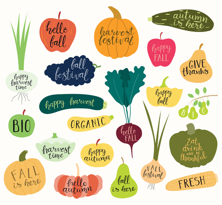 Big autumn harvest set with hand written calligraphy lettering quotes in fruits and vegetables. Isolated objects on white background. Vector illustration. Flat style design. Concept fall, Thanksgiving