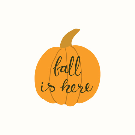 Hand drawn vector illustration of a pumpkin, with lettering quote Fall is here. Isolated objects on white background. Flat style design. Concept for gardening, autumn harvest.