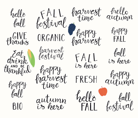 Big autumn harvest set with hand written brush calligraphy lettering quotes. Isolated objects on white background. Vector illustration. Flat style design. Concept for fall, Thanksgiving.