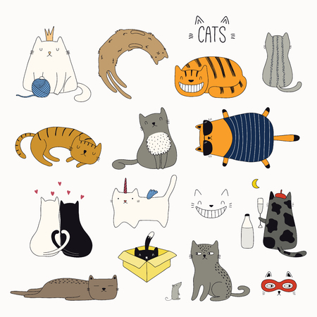 Set of cute funny color doodles of different cats. Isolated objects on white background. Hand drawn vector illustration. Line drawing. Design concept for poster, t-shirt, fashion print. Ilustração