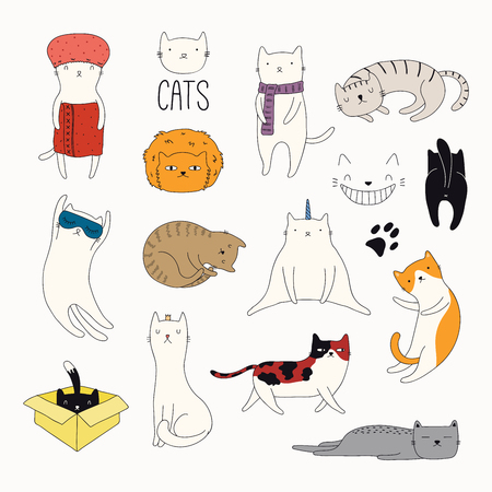 Set of cute funny color doodles of different cats. Isolated objects on white background. Hand drawn vector illustration. Line drawing. Design concept for poster, t-shirt, fashion print. Stock Illustratie