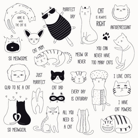 Set of cute funny black and white doodles of different cats and quotes. Isolated objects. Hand drawn vector illustration. Line drawing. Design concept for poster, t-shirt, fashion print. Vettoriali