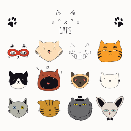 b42023596034 Set of cute funny color doodles of different cats faces. Isolated objects  on white background