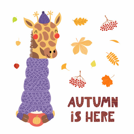 Hand drawn vector illustration of a cute giraffe in sweater, hat, with cup, falling leaves, quote Autumn is here. Isolated objects on white. Scandinavian style flat design. Concept for children print.