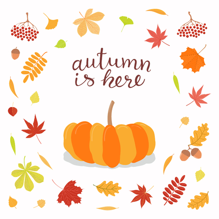 Hand drawn vector illustration with pumpkin, frame of leaves, lettering quote Autumn is here. Isolated objects on white background. Flat style design. Concept for seasonal banner, poster, card.  イラスト・ベクター素材