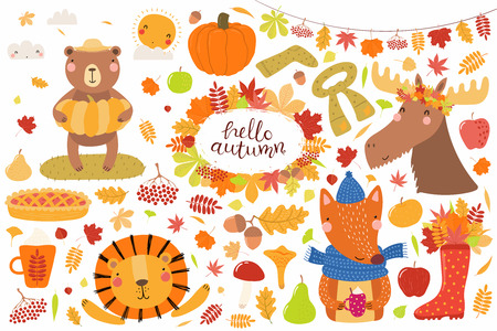 Big autumn set with cute animals bear, lion, moose, fox, leaves, food. Isolated objects on white background. Hand drawn vector illustration. Scandinavian style flat design. Concept for children print.