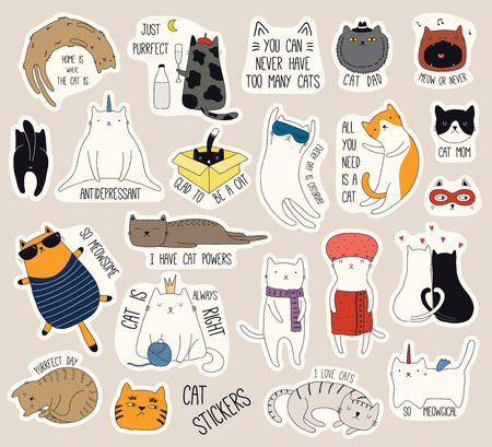 Set of cute funny stickers with color doodles of different cats with quotes. Isolated objects. Hand drawn vector illustration. Line drawing. Design concept for print, logo, icon, badge, label, patch.