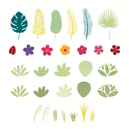 Set of tropical plants elements flowers, palm leaves, grasses, bushes, shrubs. Isolated objects on white background. Hand drawn vector illustration. Flat style design. Concept for children print.