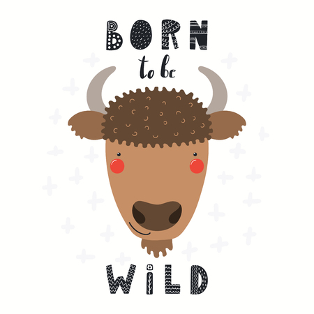Hand drawn vector illustration of a cute funny bison face, with lettering quote Born to be wild. Isolated objects on white background. Scandinavian style flat design. Concept for children print.