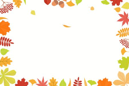 Hand drawn frame of colorful autumn leaves on white background. Rowan, maple, oak, chestnut, birch, ginkgo, momiji. Vector illustration. Flat style design. Concept, element season poster, banner. Imagens - 133613382
