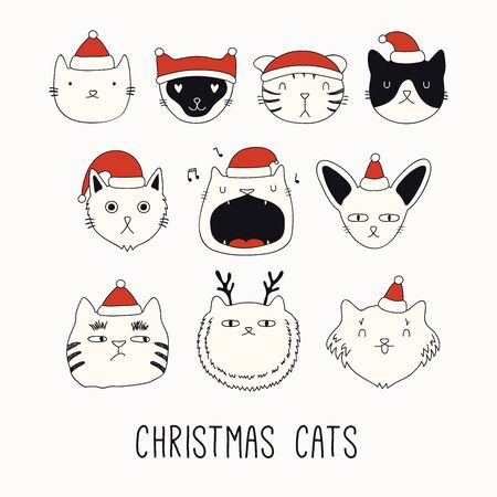 Collection of cute funny doodles of different cats faces in Santa Claus hats. Isolated objects on white. Hand drawn vector illustration. Line drawing. Design concept for Christmas card invite, print.