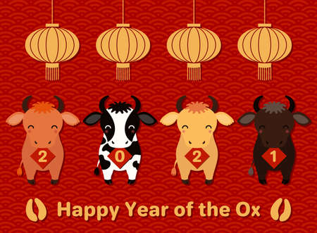2021 Chinese New Year vector illustration with cute oxen holding cards with numbers, lanterns, hoof prints, typography, gold on red. Design concept for holiday card, banner, poster, decor element.