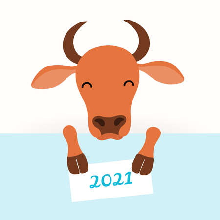 2021 New Year vector illustration with cute cartoon ox, face and legs, holding a card with 2021 text, on white. Flat style design. Concept for holiday card, banner, poster, decor element.