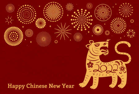 2022 Chinese New Year cute tiger silhouette, fireworks, typography, gold on red background. Oriental, eastern style ector illustration. Flat design. Concept holiday card, banner, poster, decor element Stock Illustratie