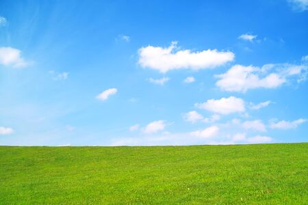 grass field: Summer landscape. Green grass and blue sky wint clouds. Stock Photo