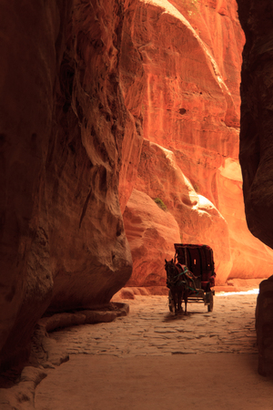 horse cart: A Horse cart transporting tourists in the city of Petra in Jordan.