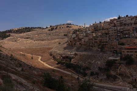 mount of olives: A view of the Mount of Olives across the Kidron valley. This is looking from th City of David towards the Mount of Olives.