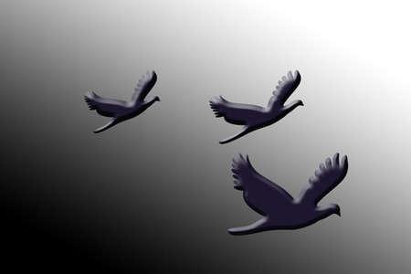 three doves photo