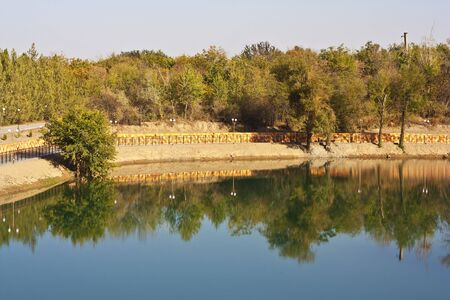 autumn forest reflection  photo