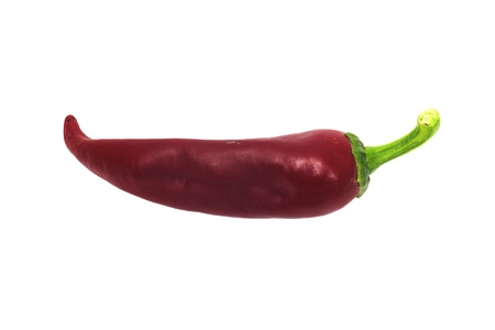 hottest: red chilly  Stock Photo