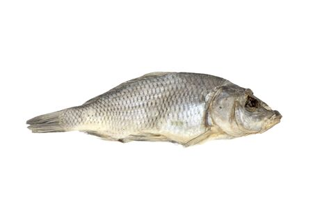allocated: Dried fish allocated on a white background  Stock Photo