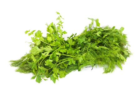 dill and parsley isolated on a white background  photo