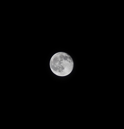 our full moon at night against a black sky Stock Photo - 9333099
