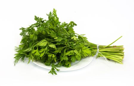 dill and parsley at platw isolated on a white background  Stock Photo - 9624214