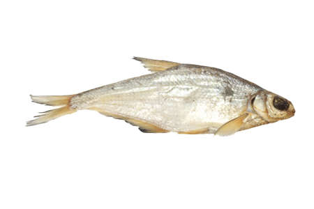 bream isolated on white background  photo