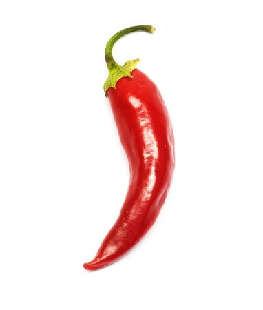 spicy chilli: red chilly  Stock Photo