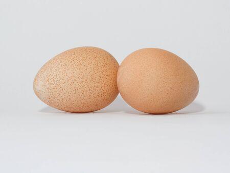guinea fowl: Eggs of a guinea fowl