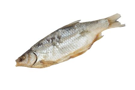 redeye: Dried Redeye Fish Isolated on White Background